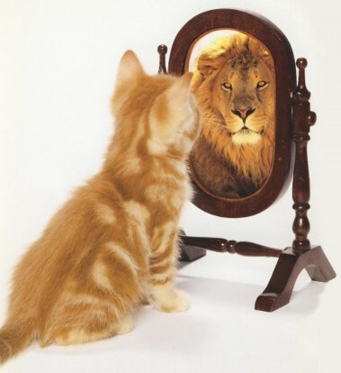 Persoonlijke groei coaching